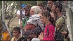 Мигрантска криза: Европа пред нови закани или шанси?