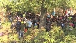 Мигранты прорвали полицейский кордон в Товарнике (Хорватия)