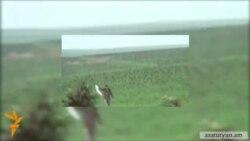 Ադրբեջանական տեսանյութը բեմականացված է, հայ զինվորի համազգեստը՝ փոխված․ Դավիթ Բաբայան
