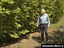 Florin Stănică, profesor universitar în Horticultură la Universitatea de Agronomie din București, este gata să-i sfătuiască pe fermieri.