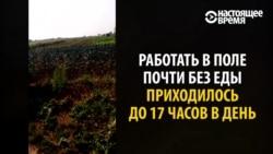 """""""Догоняли, ловили и били"""": белорус рассказывает, как попал в трудовое рабство в России"""
