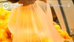 «Приносите сумки»: уже 60 стран мира запретили пластиковые пакеты в супермаркетах