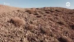 Жаңа Жібек жолы: даму ма, алдану ма?