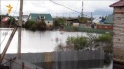 Амурская область. Вода уходит, зима приходит