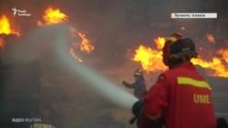 Лісові пожежі в Іспанії та Португалії: жителів евакуюють (відео)