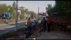 400 тысяч цветов будут посажены в Бишкеке