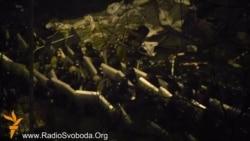 Майдан в облозі «Беркута»