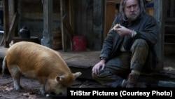 """Pig"" filmindən kadr"