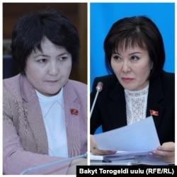 Авторы законопроекта - депутаты Гульшат Асылбаева и Айнура Осмонова.