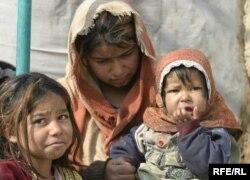 Əfqanıstan - 2010