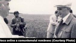 5 iunie 1986. Vizită de lucru la Cobadin, județul Constanța. Sursa: comunismulinromania.ro