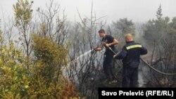 Vatrogasci na Luštici 17. jula 2017.