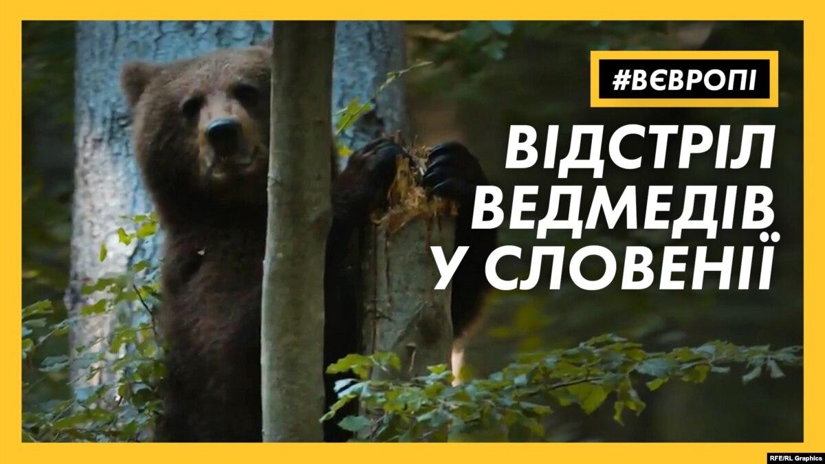 Почему правительство Словении запретил отстрел диких зверей? | #ЕВРОВПЕ