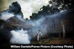 Так с малярийными комарами борются в Таиланде