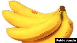 Мир будущего видится авторам доклада несколько грустным - бананы в нем станут непозволительной роскошью.