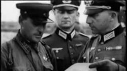 Нацисташца гергарло