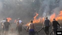 Пожарные и волонтеры борются с огнем вблизи автотрассы Москва - Нижний Новгород. 5 августа 2010 года.