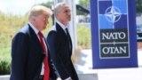 Президент США Дональд Трамп и генсек НАТО Йенс Столтенберг. 11 июля 2018