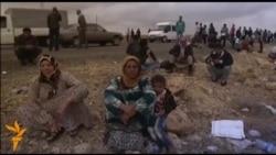 Бегалци - страдања и ризици