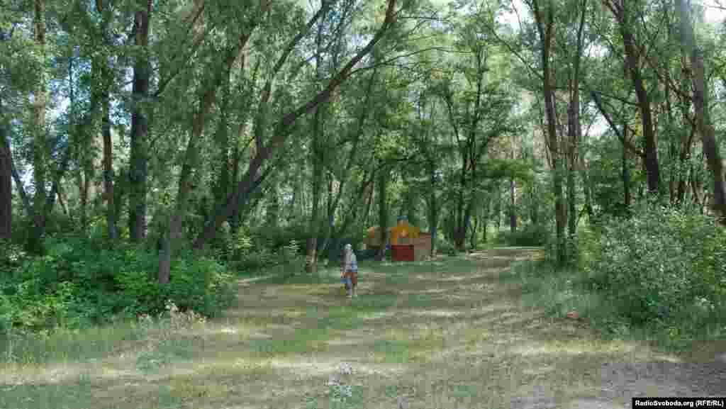 Між деревами гості міста зможуть припаркувати автівки (фото О. Овчинникова)