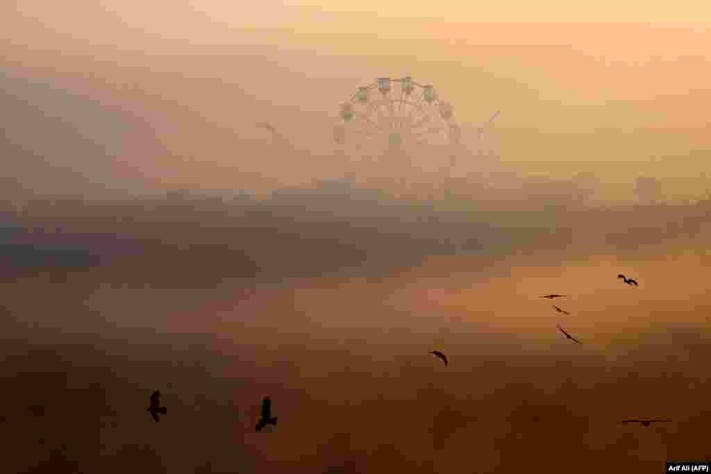 Birds fly amid heavy smog conditions in Lahore, Pakistan. (AFP/Arif Ali)