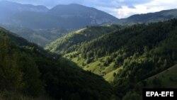 Pădurile de la poalele Pietrei Craiului au scăpat deocamdată de drujbe