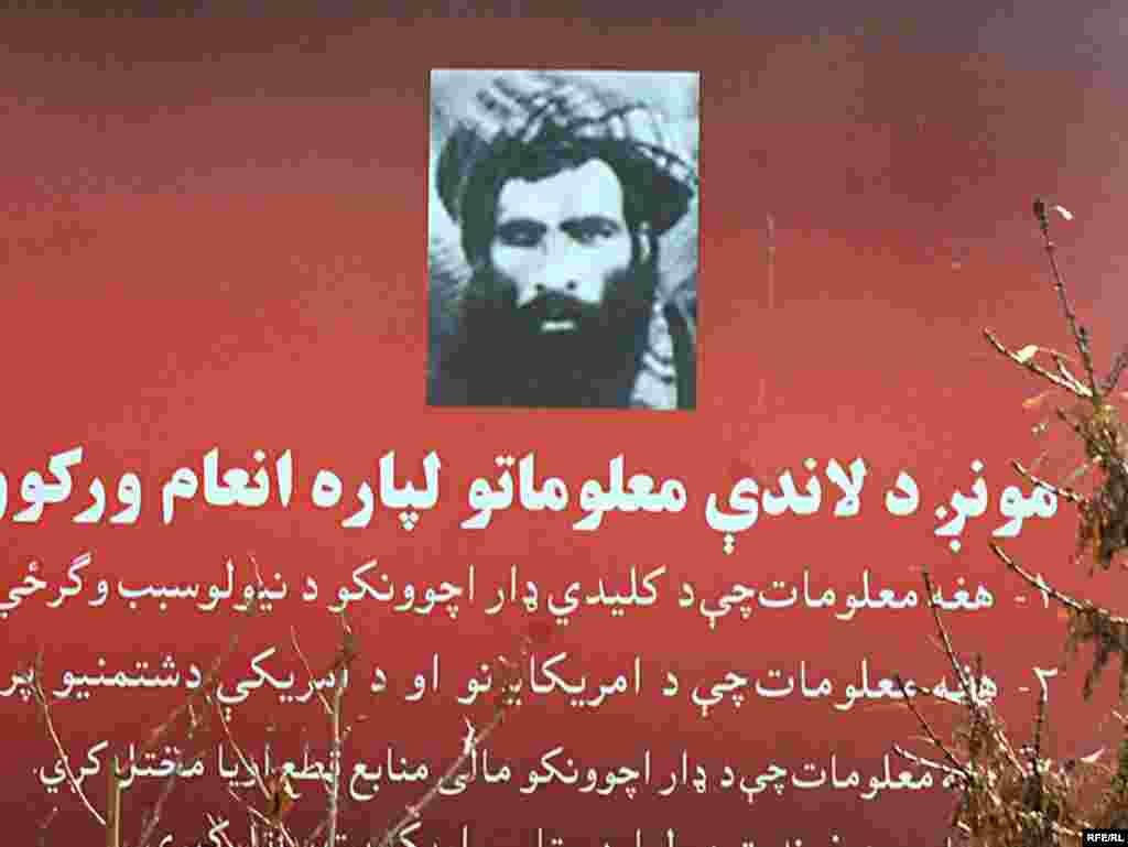 The Roots Of The Taliban #5