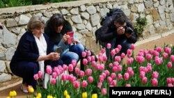 Тюльпаны в Никитском ботаническом саду. Архивное фото