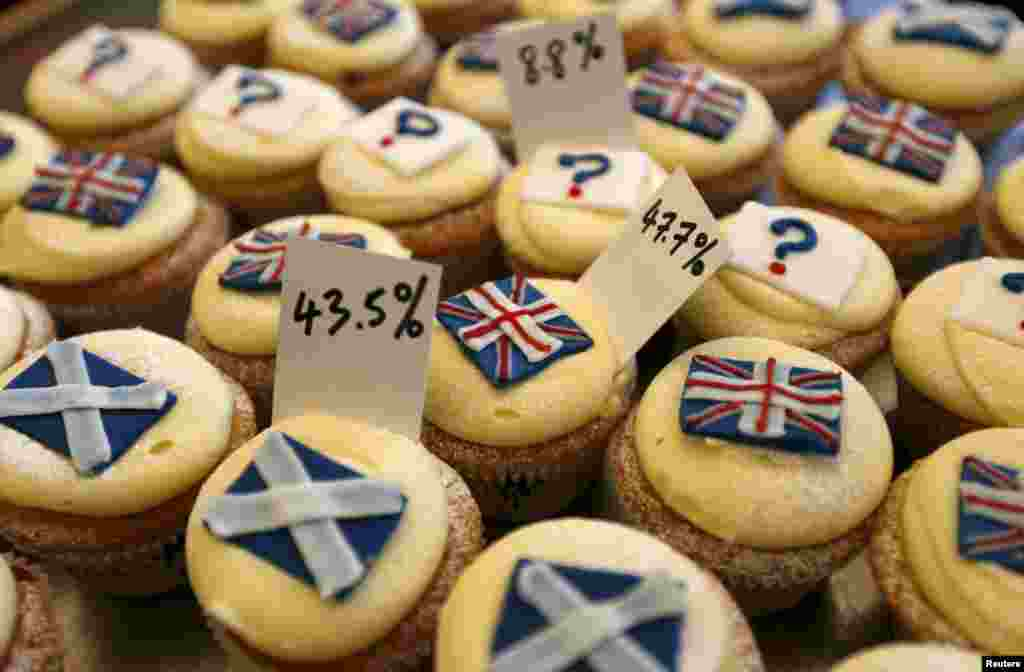 Cupcakes are displayed in the window of Cuckoo's bakery in Edinburgh, Scotland, ahead of a landmark independence referendum. (Reuters/Russell Cheyne)
