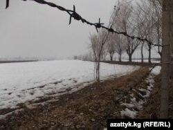 Кыргыз-өзбек чек арасындагы зым тосмо.