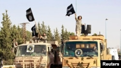 شبه نظامیان «خلافت اسلامی» پرچم های خود را در خیابانهای شهر «رقه» سوریه تکان میدهند.