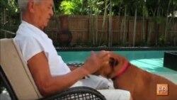 Ученые тестируют способ продления жизни собак