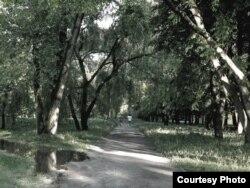 лея зь бегавой дарожкай у парку 40-годзьдзя Кастрычніка ў Менску, на месцы якога пабудаваны гатэль «Пэкін». 23 траўня 2011.