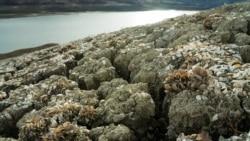 В Ялте подают воду на несколько часов в день. Что происходит с пресной водой в аннексированном Крыму