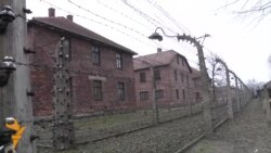 Saved By A Mistake In The Paperwork - An Auschwitz Survivor's Story