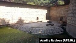 Heyvanların hovuzlarda vəziyyət eynidir, 19.06.2016