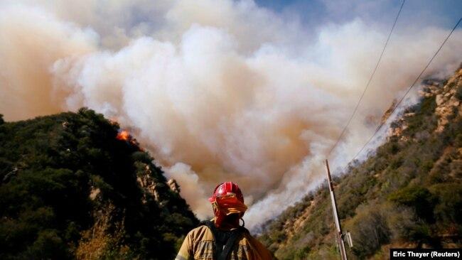 Кількість жертв пожеж у Каліфорнії перевищила 40. Шокуючі фото та відео