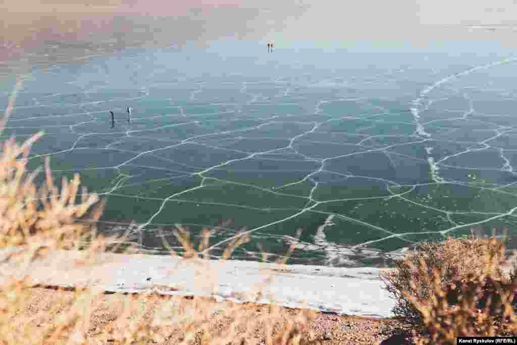 Летом в разных местах вода имеет свой цвет: где-то она нежно-голубая, где-то изумрудного оттенка, а где-то практически черная.
