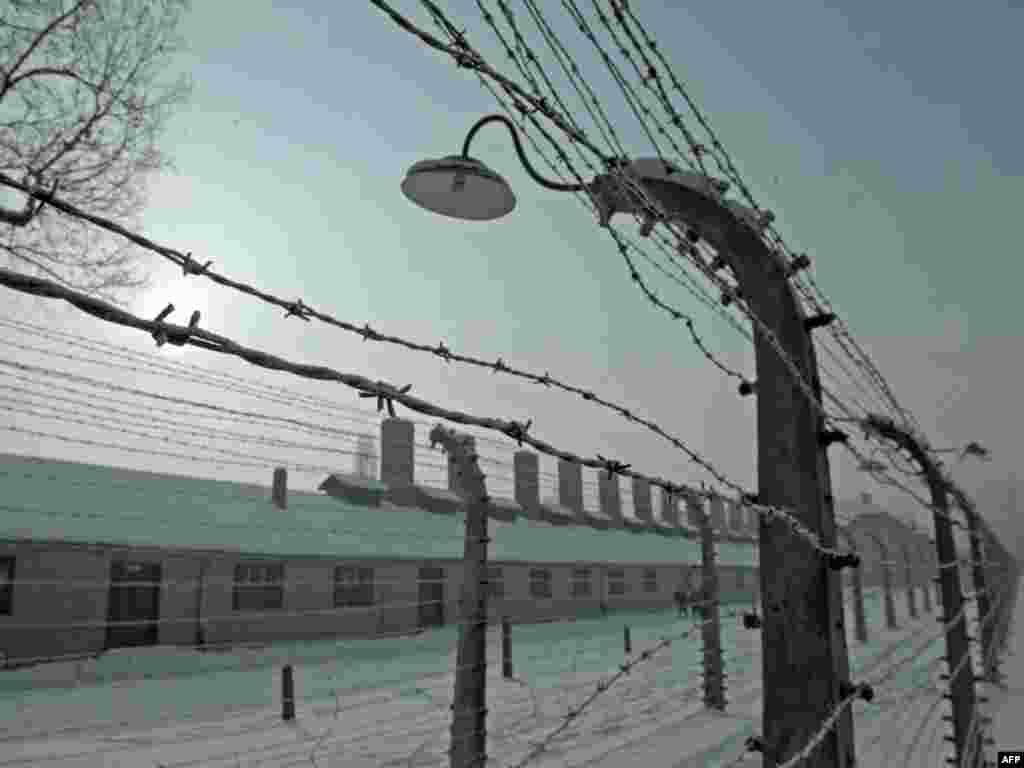 Освенцим/Аушвиц-Биркенау концлагеріндегі тікенек сымнан тартылған қоршау.