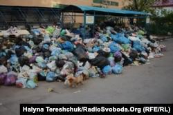 Сміттєвий колапс у Львові, травень 2017 року