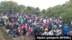 موج پناهجویان و مهاجران در مرز صربستان با کرواسی