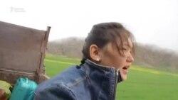 Феминист манасчы Бактыгүл