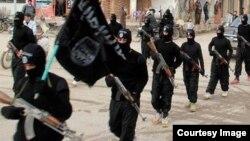 آرشیف، یو شمېر داعش جنګیالي