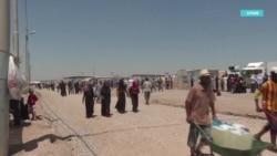 Волонтеры обещают вернуть в Кыргызстан 150 детей и женщин из Ирака и Сирии