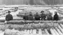 Депортированные в июне 1941 года украинцы и эстонцы сплавляют лес в Кировской области