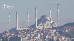 ВИДЕО: Бу йил 2500 га яқин ўзбекистонлик Туркияда ишга олиниши мумкин