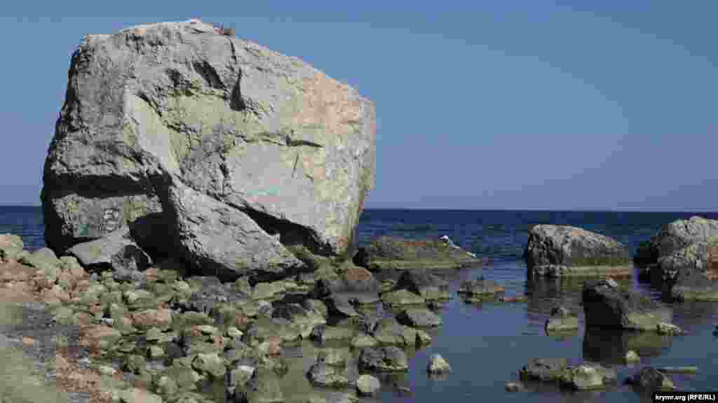 Разрисованные камни радуют полетом фантазии