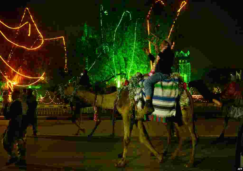 Residents ride camels during celebrations on the eve of Eid Milad-un-Nabi, the birth of the Prophet, in Lahore, Pakistan, on January 13. (AFP/Arif Ali)