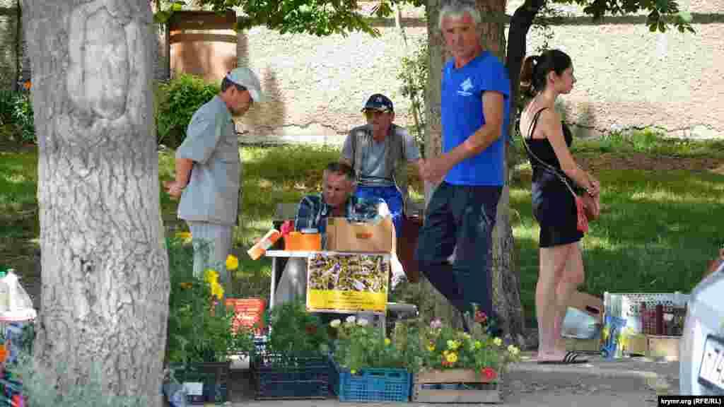 На центральной улице под деревьями развернулась торговля овощами, фруктами, саженцами цветов