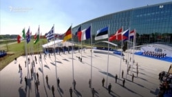 NATO At 70: How A Cold War Survivor Redefined Itself